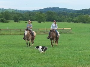 Josh, Caroline, and Buzzby enjoying the scenery around the farm.
