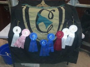 Someone made out like a bandit with ribbons! Congratulations!