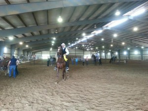 The PWHAT show promotes flat-shod, naturally gaited walking horses.