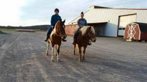 Grace Law (left) and Ajax (right) are both excellent trail mounts!