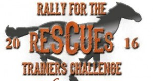 RallyRescues