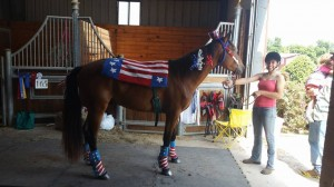 Some of the horses got super patriotic with their outfits!