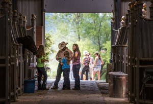 Show attendees of all ages walked through our show barn to visit with the rescue horses.