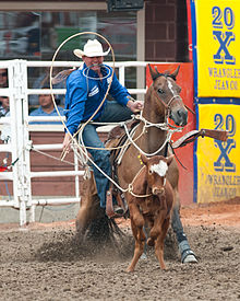 Roping picture