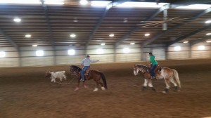 Great photo of roping in action!