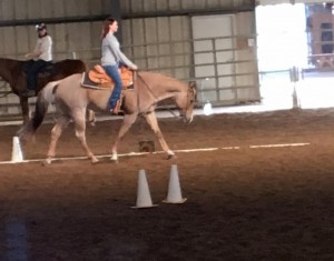 Check out those Western Dressage skills!