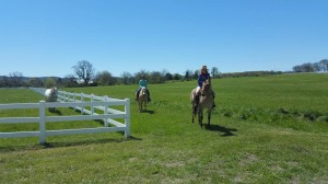 We're sure to have more pretty days like this during the summer! Come on out for a trail ride!