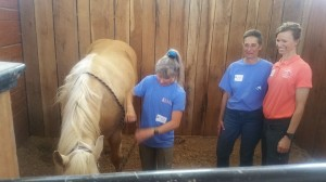What horse wouldn't love a clinic dedicated to massage therapy?!