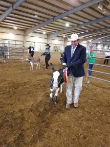 This mini donkey won big in the show ring!