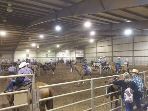 We had a blast hosting so many expert horse and rider teams!