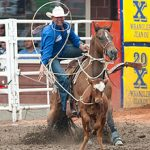 Roping-picture
