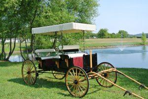 white-carriage-012