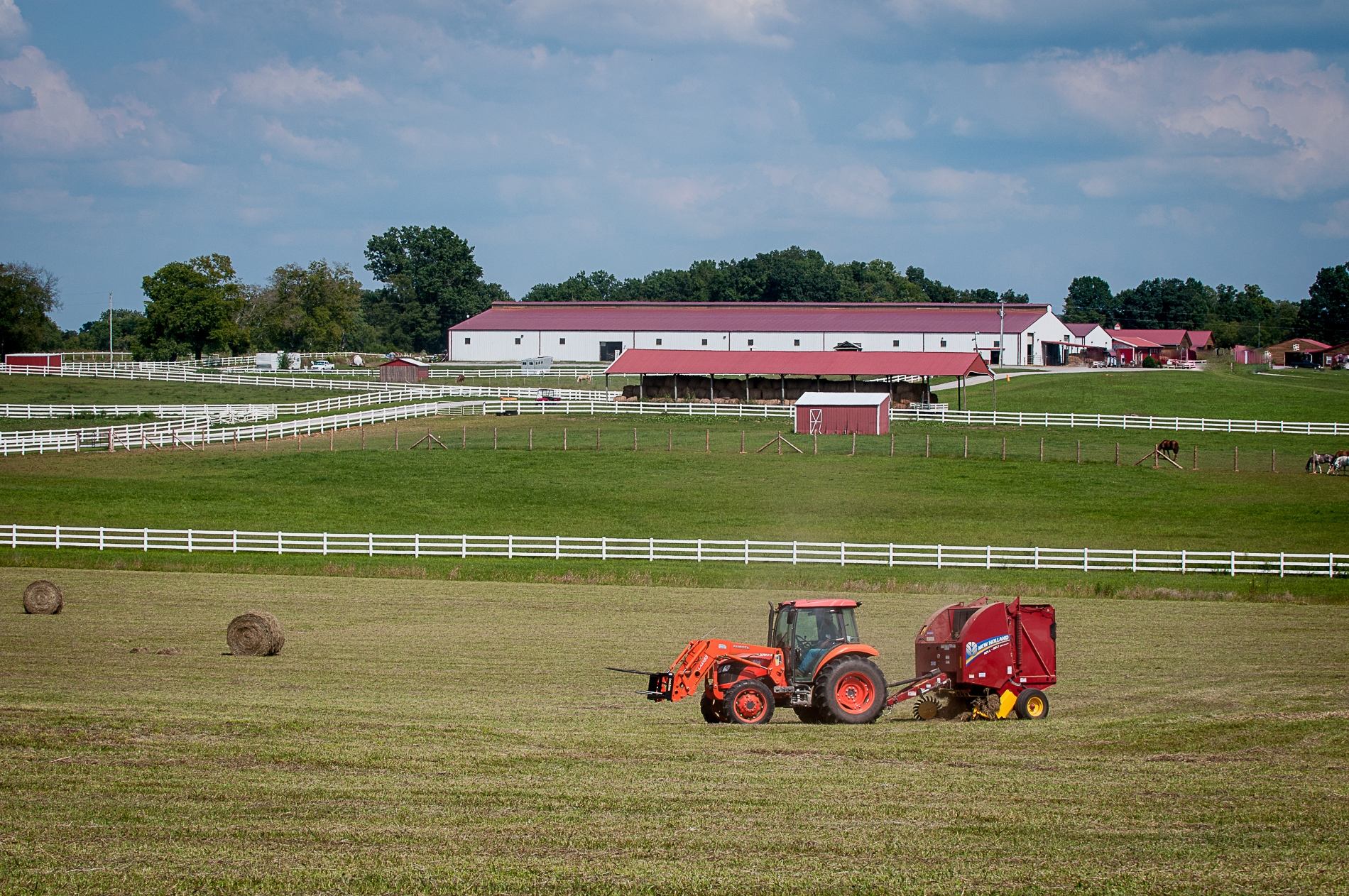 Clearview Horse Farms